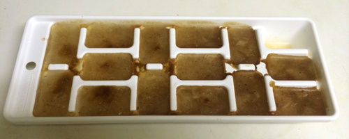 ice_cube_tray_finished.jpg