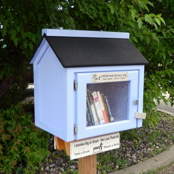 little_free_library1.jpg