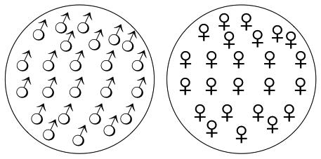 gender_v1