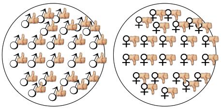 gender_v3